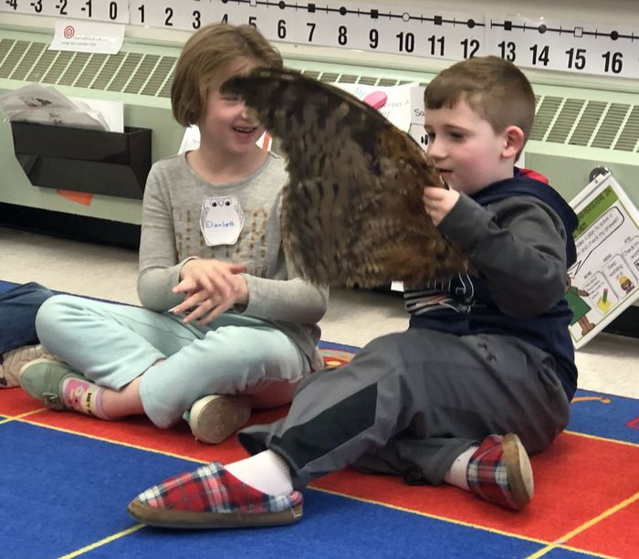 First graders looking at an Owl wing during the Chewonki Traveling Natural History program